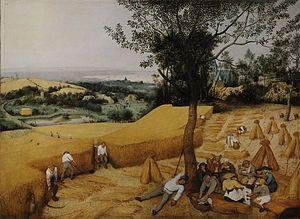 La cosecha o Los cosechadores (en neerlandés, De korenoogst), es una obra del pintor flamenco Pieter Brueghel el Viejo, perteneciente al ciclo de seis obras sobre los «Meses» del año. Representa el verano o los meses de agosto y septiembre. Es un óleo sobre tabla, pintado en el año 1565. Mide 118 cm de alto y 161 cm de ancho. Se exhibe actualmente en el Museo Metropolitano de Arte de Nueva York, Estados Unidos, donde se exhibe con el título inglés de The Harvesters.