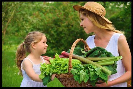 Yeşil Yapraklı Sebzeler Beynimize Faydalı | bitki ve insan