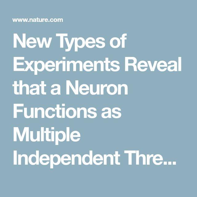 Best 25+ Scientific reports ideas on Pinterest Scientific method - scientific report