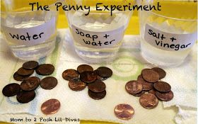The Penny Experiment. Great science activity for President's Day!