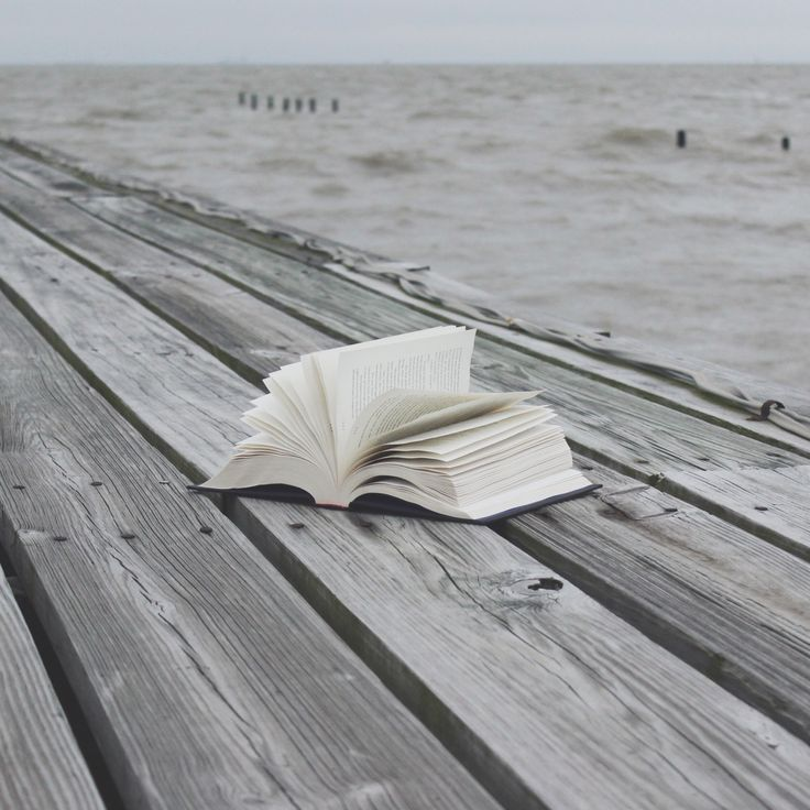 nightleafreads:  A Book by the Sea