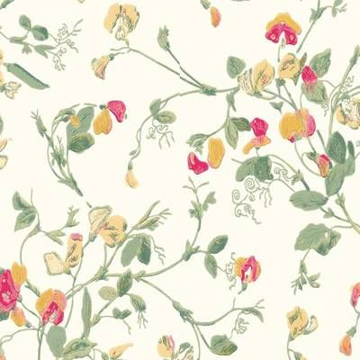 COLE & SON TAPET SWEET PEA-100/60