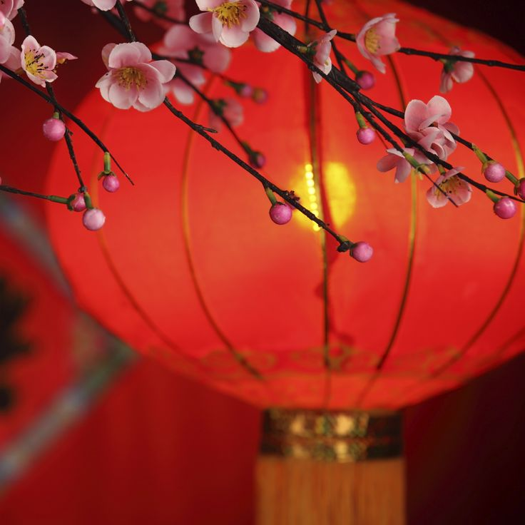 1000 ideas about chinese new year background on pinterest