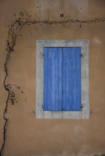 The Light and Colors of Provence, France: Picture of Vines and Door in Provence
