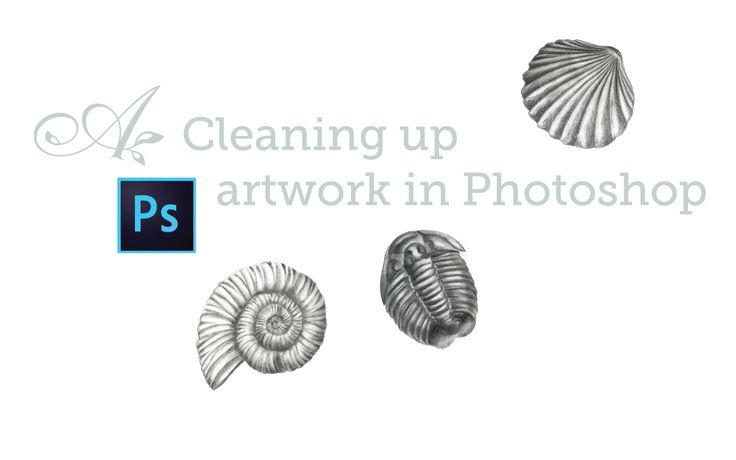 how to clean your photoshop