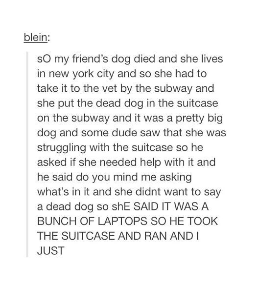 That poor dog