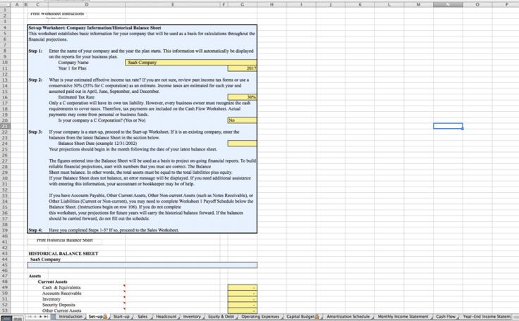 Software as a Service / SaaS Business Plan Template Sample