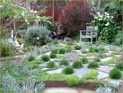 168 best No Mow images on Pinterest Backyard ideas Gardens and