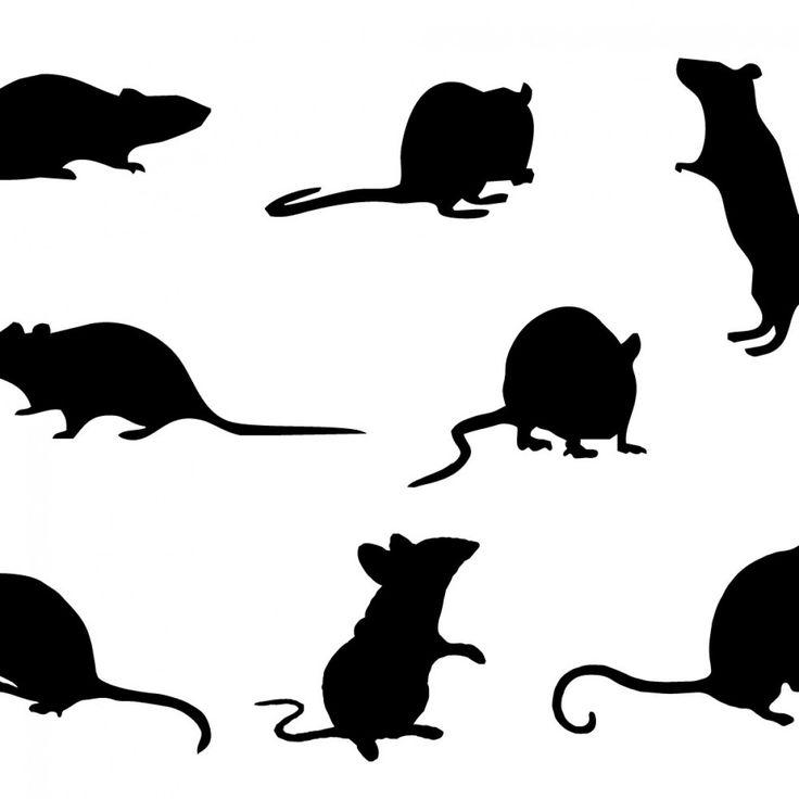 картинка силуэт крысы функциональные мтб-ботинки для