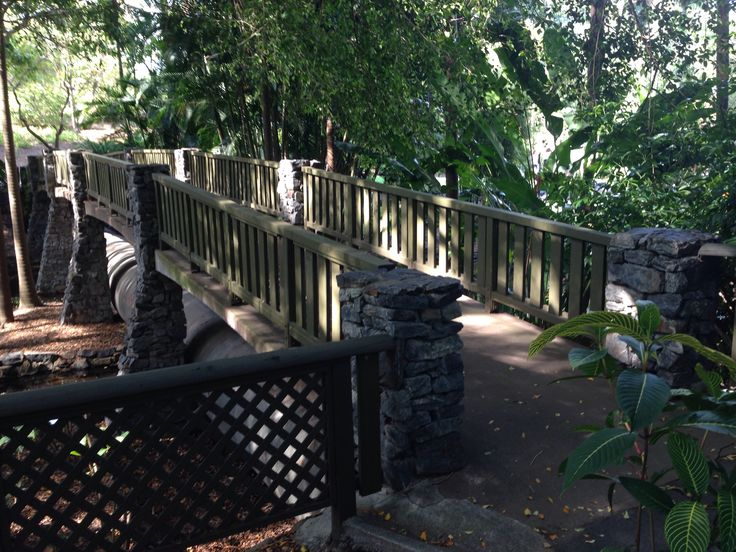 Brisbane Botanical Gardens Mt Coot-tha...venue for many local weddings. This bridge is close to Wedding Lawn 1 (Palm Tree Lawn)...the groom would catch glimpses of his beautiful bride to be as she walked across the bridge to the ceremony #unveiledweddings