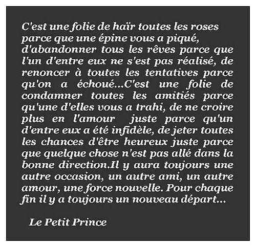 """""""Pour chaque fin, il y a toujours un nouveau départ..."""" Le Petit Prince, Antoine de Saint Exupéry. @Pulcino29"""