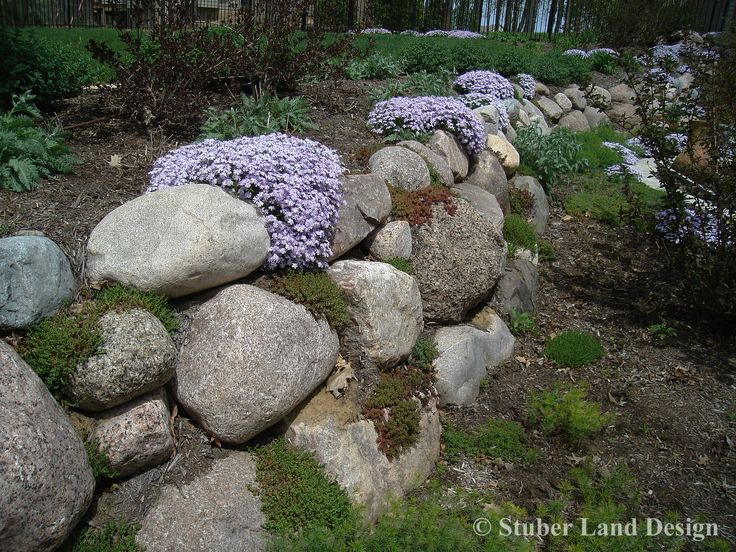 Granite Boulder retaining wall with Sedum plantings nestled in the crevices and Phlox draping over the top of the wall