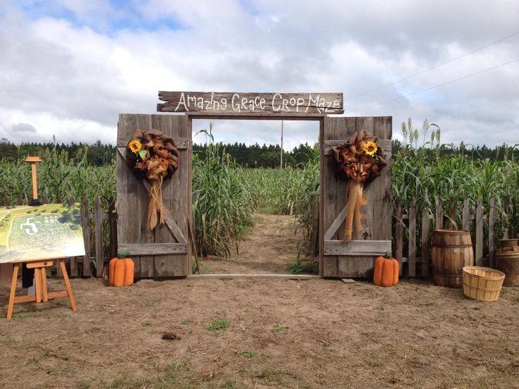 904 Happy Hour - Article - Massive Corn Maze In Jacksonville
