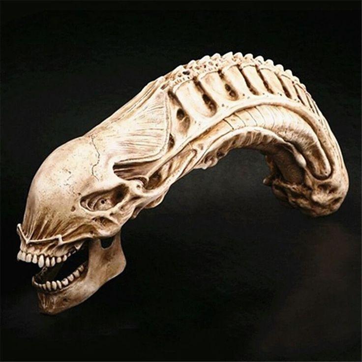 Alien vs Predator Resin Skull Replica Model