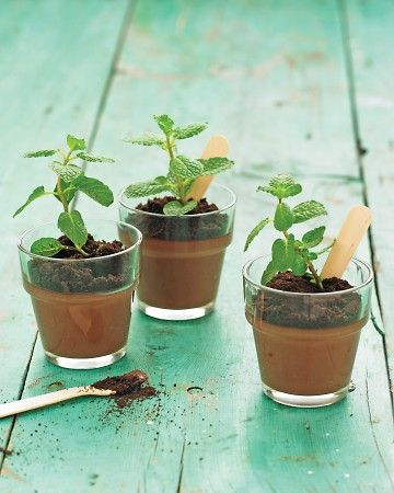 "Potted Chocolate-Mint Puddings  Kids will love making (and eating) these potted pudding desserts cleverly disguised as seedlings. Placed in glass flowerpot votives and topped with crushed chocolate-cookie ""dirt"", this chocolate-mint pudding treat will have all the adults fooled."