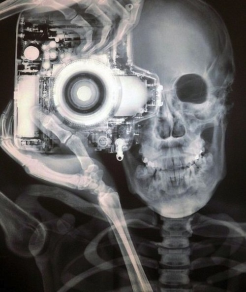 X-Ray photography. Image c. Nick Veasey