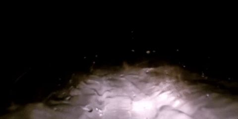 Another Alleged Yeti Sighting Has Come Out Of Russia