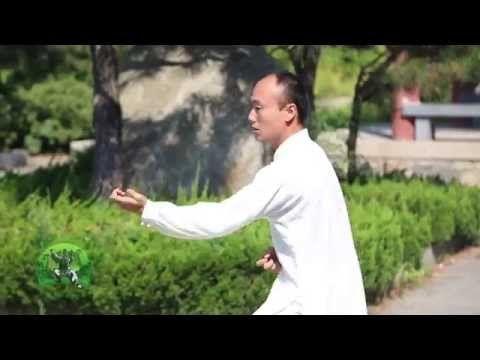 Wing Chun Kung Fu School & Training in China | Middle Kingdom Traditional Kung Fu School