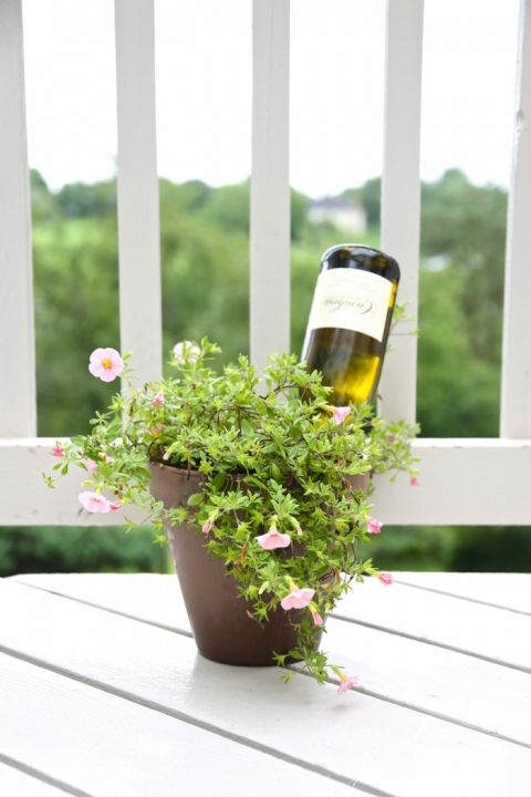 How to water plants while you're out of town | wine bottle self watering system on julieblanner.com
