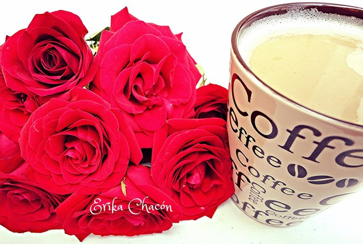 Reciclando con Erika : Rosas frescas y un buen Café
