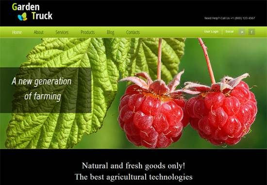 HTML5 And CSS3 Web Templates For Free Download