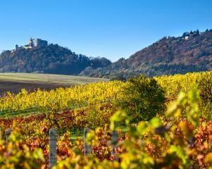 Buchlov zachycen v krásné podzimní krajině. Po příjemné procházce na hrad se můžete zastavit a ubytovat u nás. S láskou, Váš penzion Zikmundov. :)