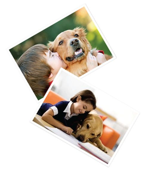 The 6th annual Pets Add Life Children's Poetry Contest is open to children in grades 3-8. To enter, simply write an original poem about your pet or pets, what you love about them, and the happiness they bring. Then submit your masterpiece for your chance to be top dog.