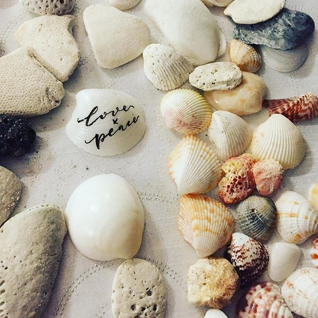Wish the world with more love and peace. Happy Valentines Day! #loveandpeace #love #valentinesday #shellslettering #shells #oceanshells #handlettering #handwriting #lettering #cubashells