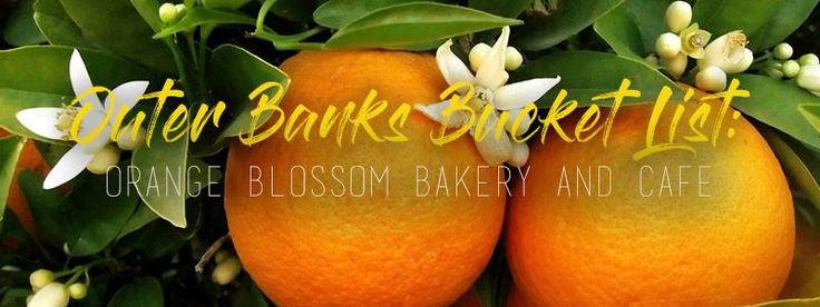 Outer Banks Bucket List: Orange Blossom Bakery - You MUST go! Make sure you get the Apple Ugly! #OBX