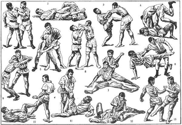 jiu jitsu samurai | some jiu-jitsu techniques