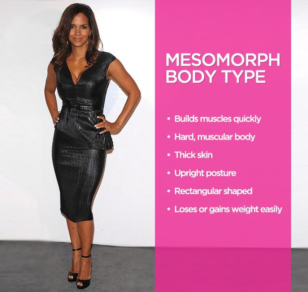 The 3 Body Types Explained: Ectomorph, Mesomorph, and ...