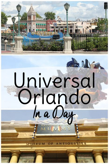 137 Best To Do In Orlando Besides Disney Images On
