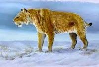 Homotheirum http://evobig.blogspot.com/2012/08/mengenal-kucing-besar-zaman-prasejarah.html