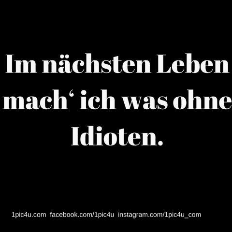 1pic4u #humor #liebe #funnypicsdaily #fun #lmao #lustig