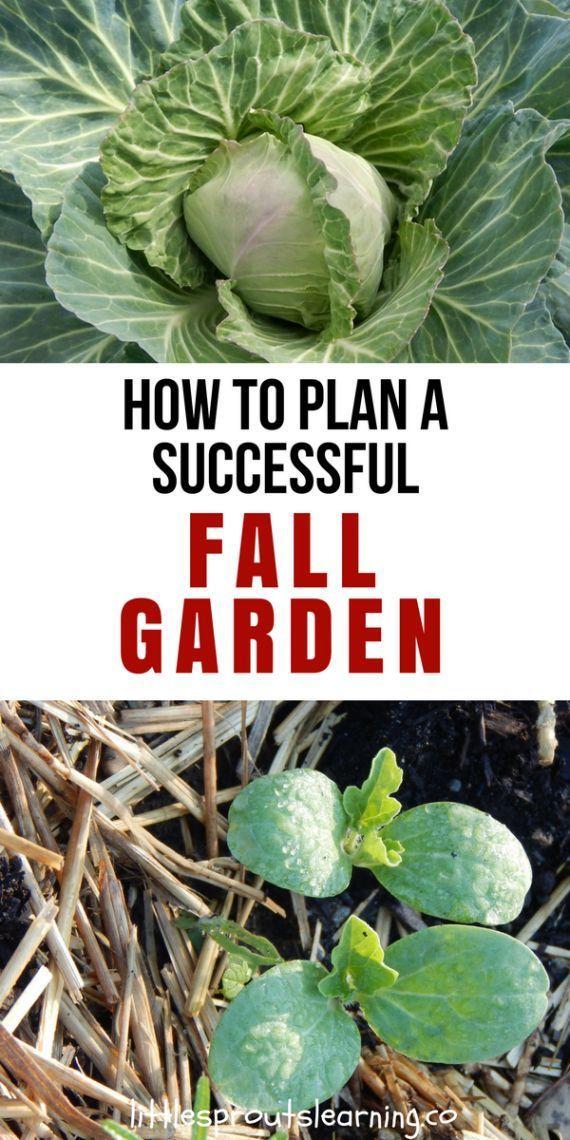 5 Fall Gardening Tasks For A Better Spring Garden Autumn Garden Fall Garden Vegetables Winter Vegetables Gardening