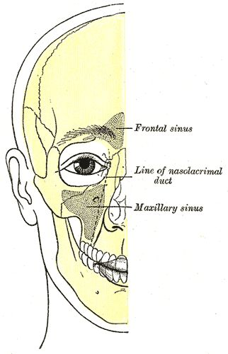 Lymphatic drainage treatment for sinus problems