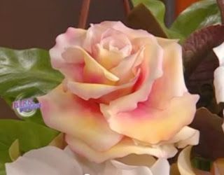 Cold Porcelain Tutorials: Variegated Rose Technique by Rubicce