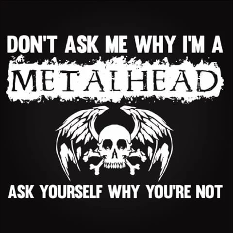Don't ask me why I'm a metalhead, ask yourself