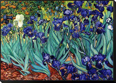Irysy, Saint-Remy, ok.1889 Reprodukcje autor Vincent van Gogh w AllPosters.pl