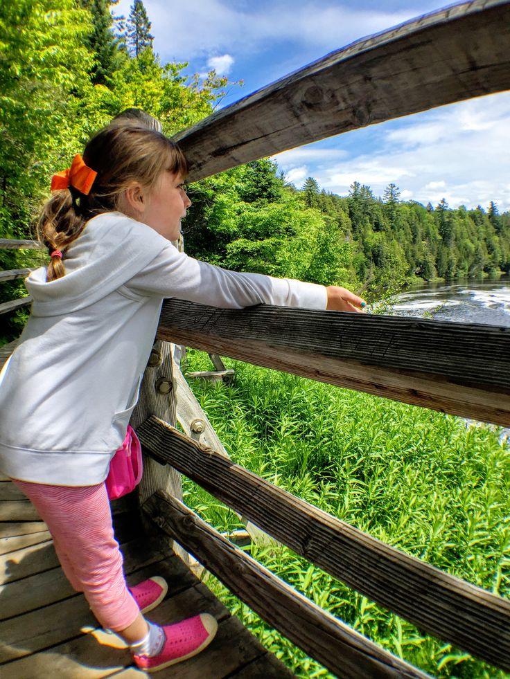 Catching a view of the waterfalls of Tahquamenon Falls State Park in Michigan's Upper Peninsula.