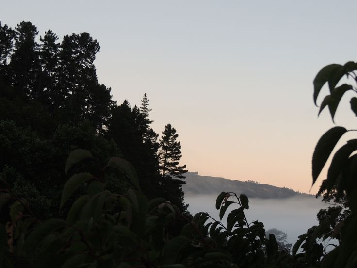 Dawn, Hutt Valley, New Zealand - Photo by Shamsirock