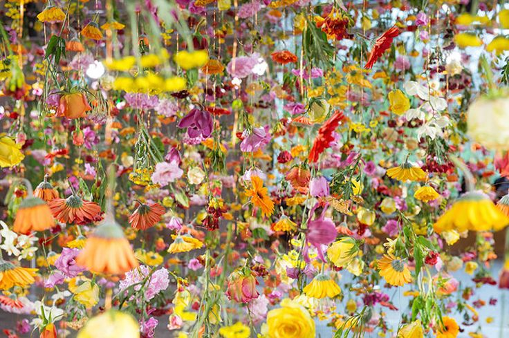 Rebecca Louise Lawis an East-London based installation artist, known for her impressive transformation of spaces using thousands of flowers and other materials collected in the nature.