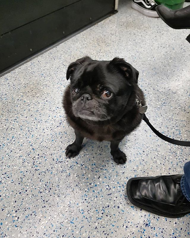 Travelling On The Tube And Giving Dadda Major Side Eye When I See