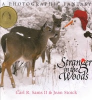 January Storytime Themes: Picture, Animals, Winter Wonderland, Christmas, Book, Snowman, Photo, Deer