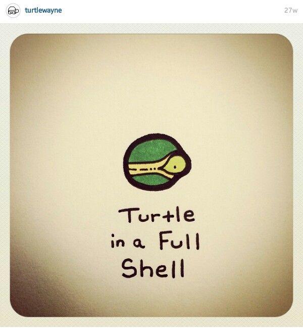 Full shell