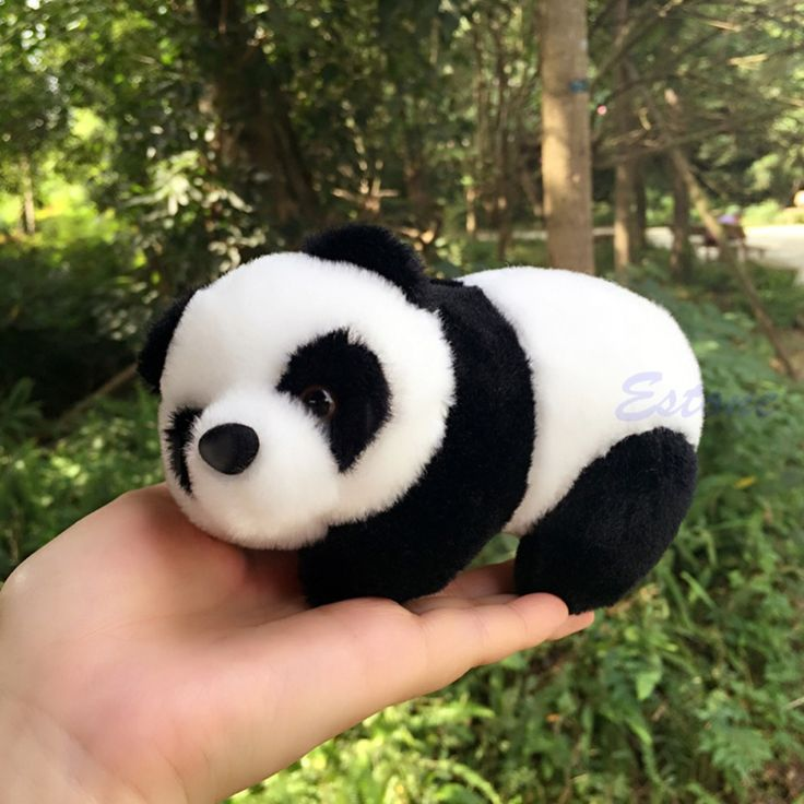 $2.25 (Buy here: https://alitems.com/g/1e8d114494ebda23ff8b16525dc3e8/?i=5&ulp=https%3A%2F%2Fwww.aliexpress.com%2Fitem%2F16cm-Lovely-Super-Cute-Stuffed-Kid-Animal-Soft-Plush-Panda-Gift-Present-Doll-Toy%2F32565601921.html ) 16cm Lovely Super Cute Stuffed Kid Animal Soft Plush Panda Gift Present Doll Toy for just $2.25