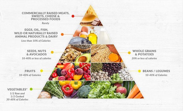 Dr fuhrmans nutritarian pyramid in 2020