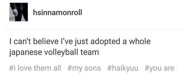 It feels like I've adopted sixty at this point... Japan can't have that many volleyball teams... Can't one group be a bunch of terrible assholes so I don't have to adopt over 100 children??