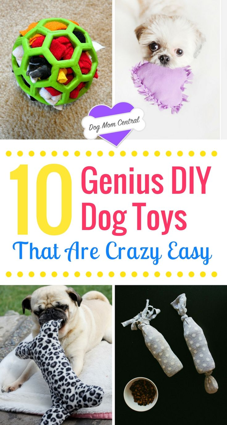 Dogs adore these DIY dog toys. These tutorials are insanely easy and create homemade dog toys that keep your pup occupied and engaged.