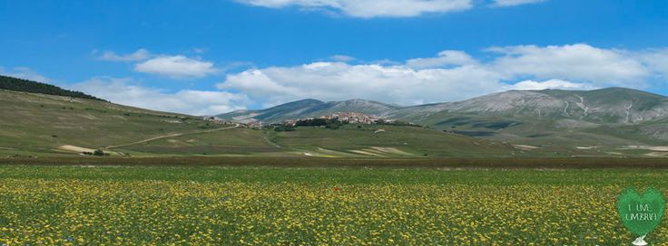 I Live Umbria in Castelluccio